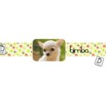 perro_escala